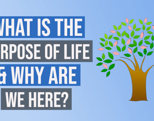 purpose of life and why are we here